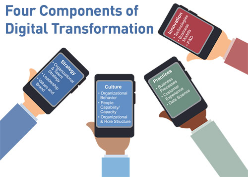 digital-evolution-pathway